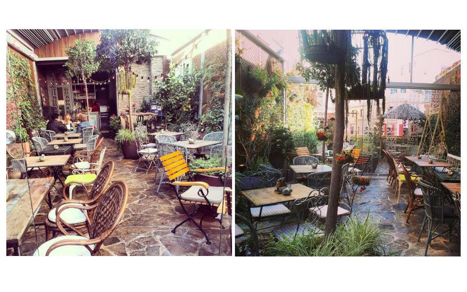El Salón de Té y el Jardín Secreto de Salvador Bachiller