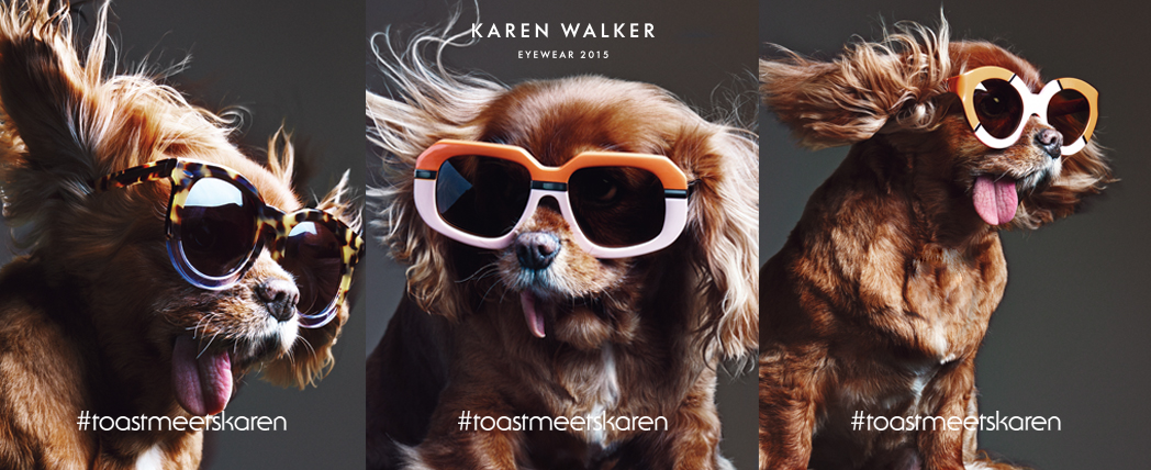 Karen Walker Eyewear feat. Toast, the dog