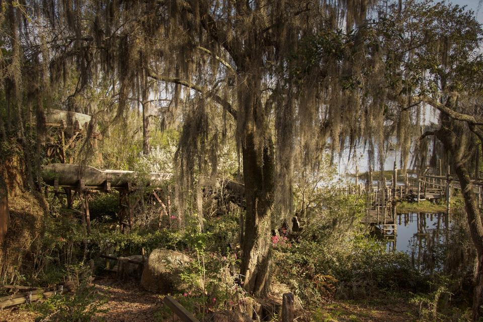 seph-lawless-abandoned-disney-waterpark-01