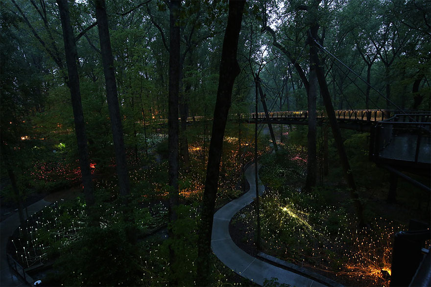 surreal-light-installations-field-of-light-bruce-munro-uluru-australia-6