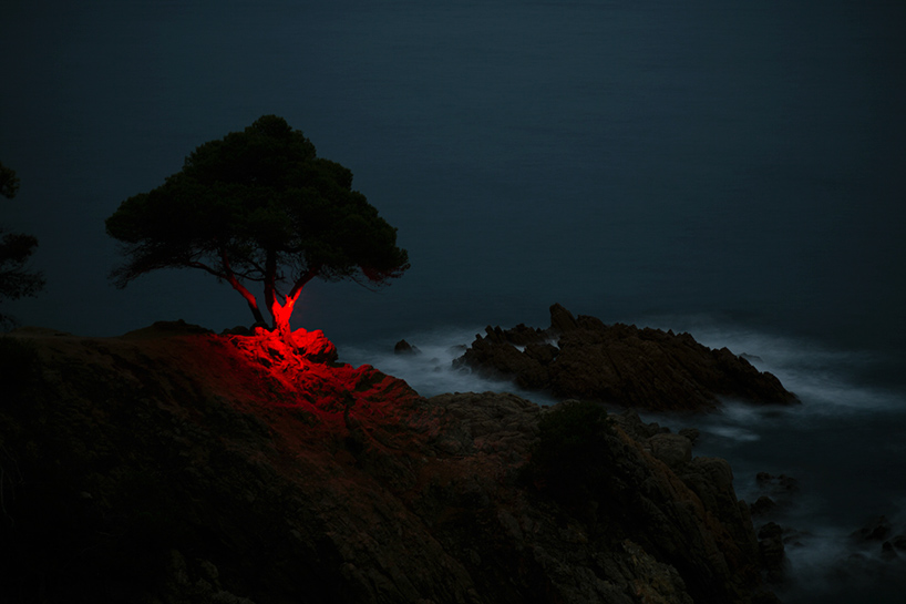 nicolas-rivals-la-linea-roja-installation-nature-long-exposure-light-designboom-08