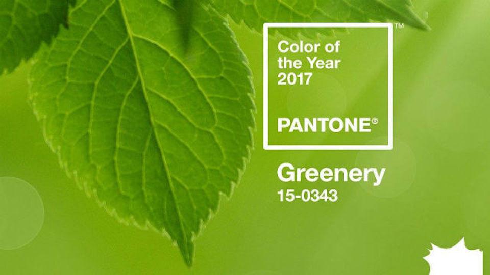 Greenery, PANTONE of the Year 2017