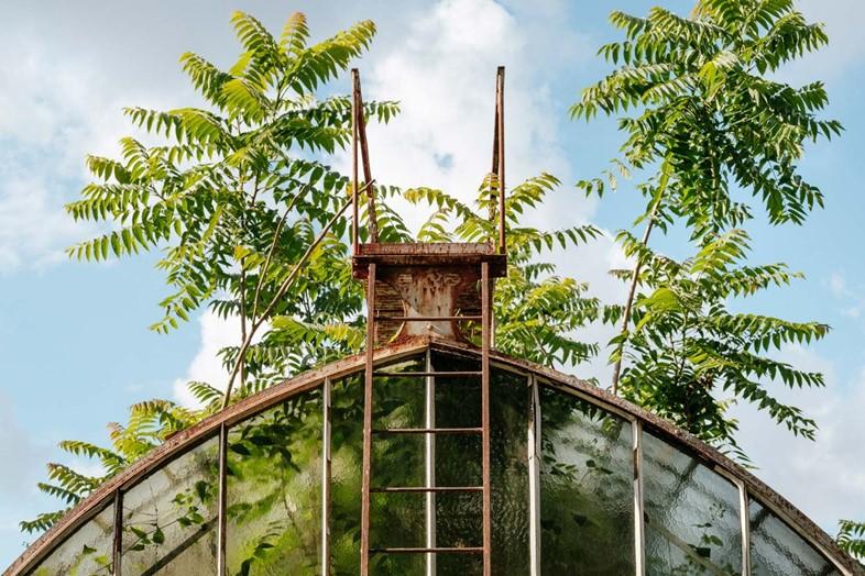 'Botanical', de Samuel Zeller