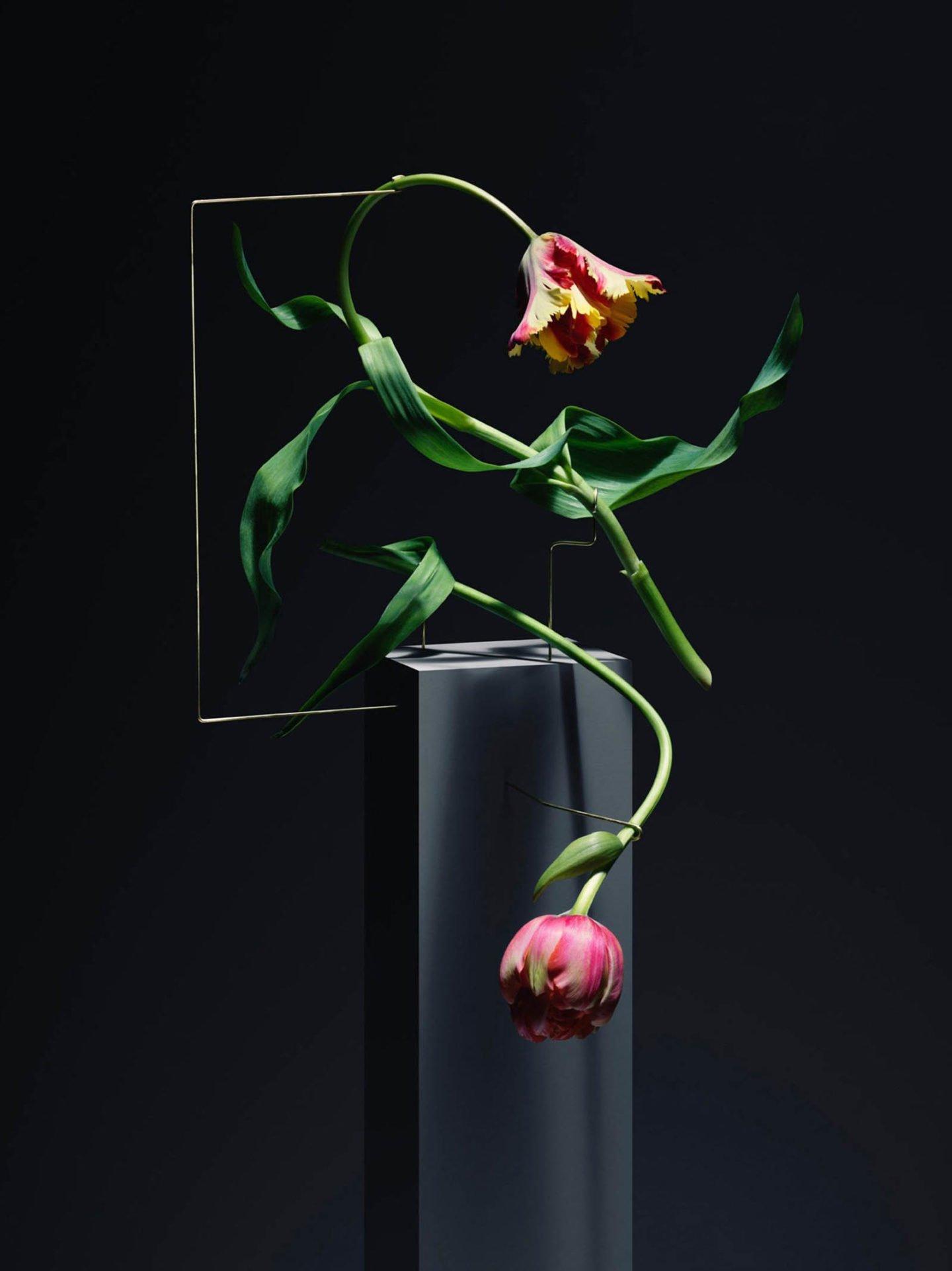 ignant-art-carl-kleiner-postures-004-1440x1921