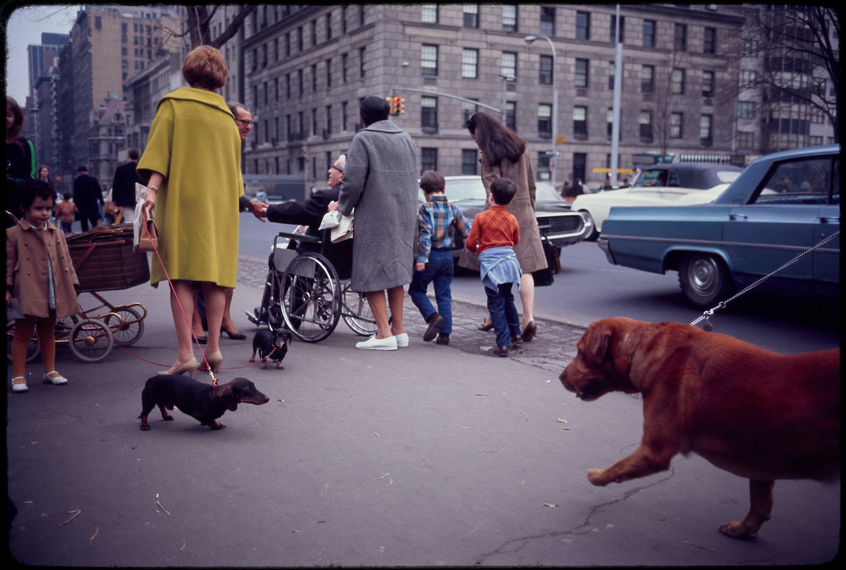c6c1ad75funtitled-new-york-1967-jpg