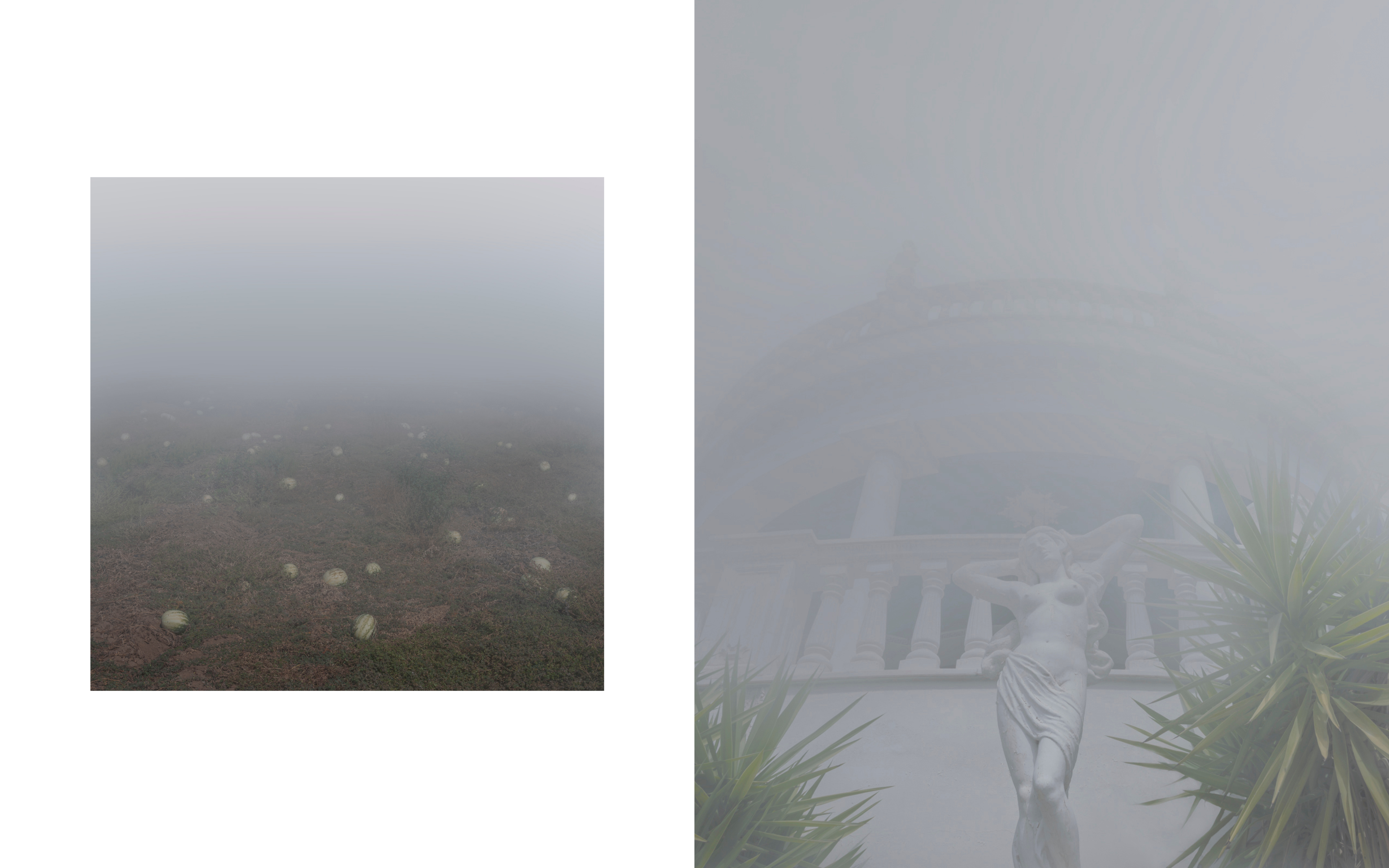 #WeeklyDiscovery: Maria Mavropoulou, la niebla es un estado mental