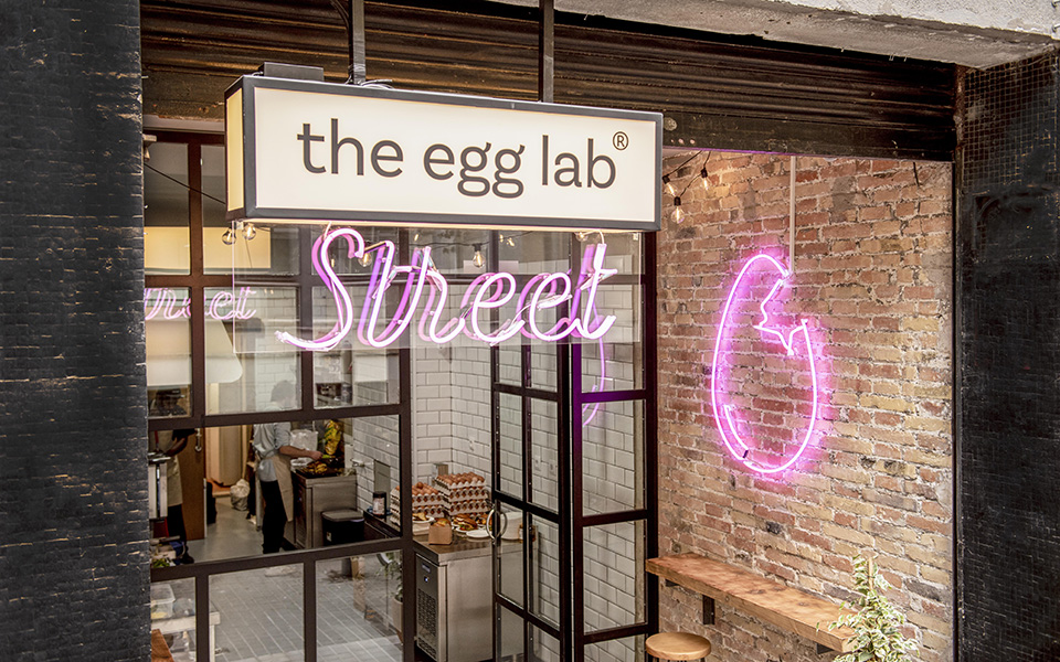 The Egg Lab2